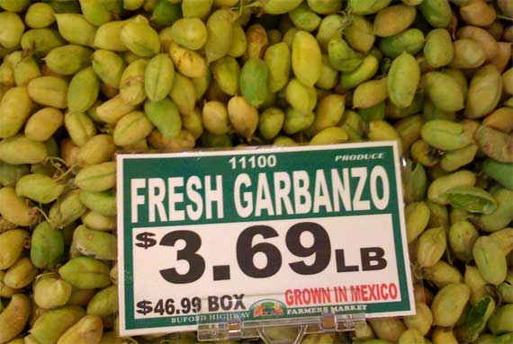 garbanzos_in_pods.jpg