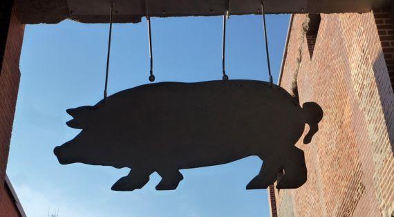 Hanging pig