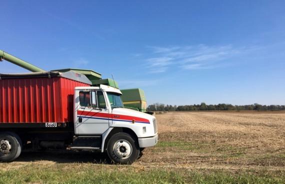 Harvest in ohio
