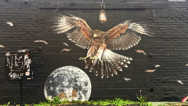 Hawk earth mural