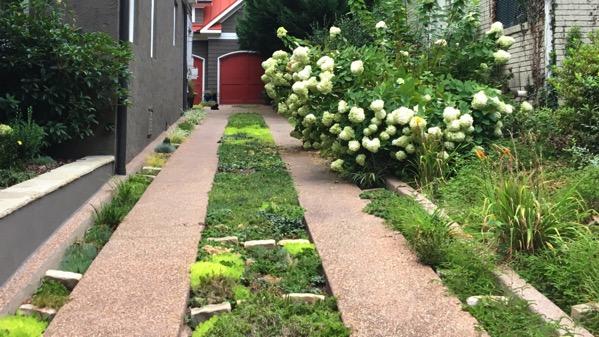 Herb driveway