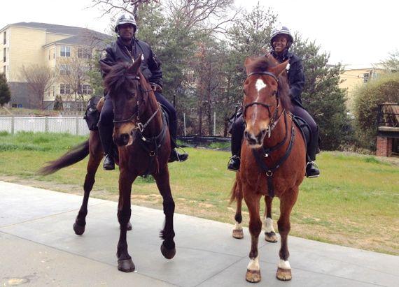 Horse patrol duo BeltLine