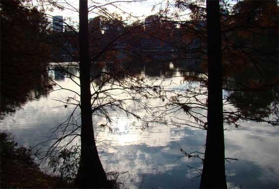 Lake_CM_reflects.jpg