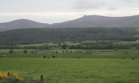 Last highland scene