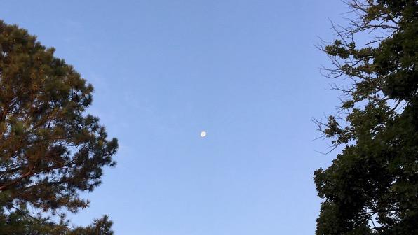 Late big moon