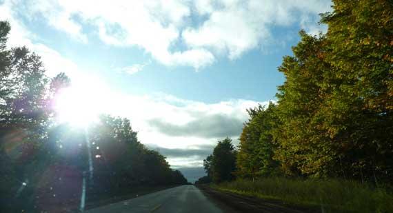 leaves_on_anonymous_road.jpg