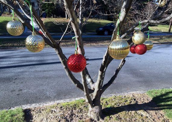 Lg outdoor ornaments