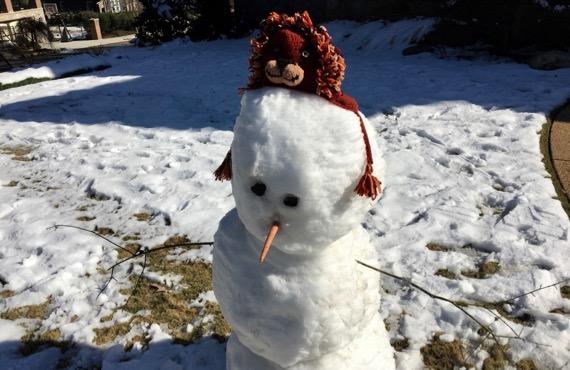 Lion king snowdude