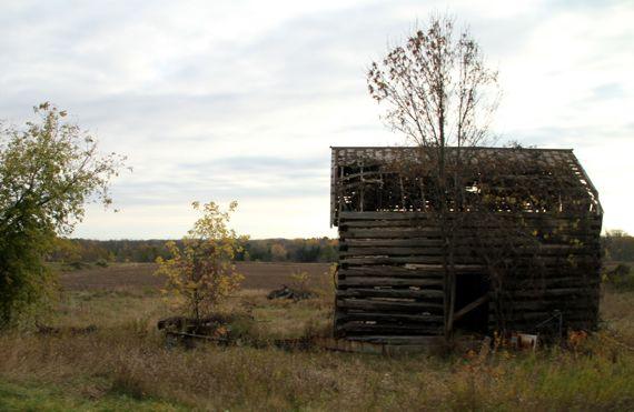 Log cabin door pen