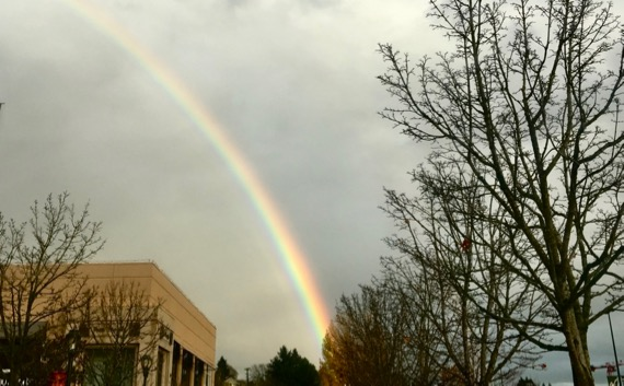 Mall rainbow