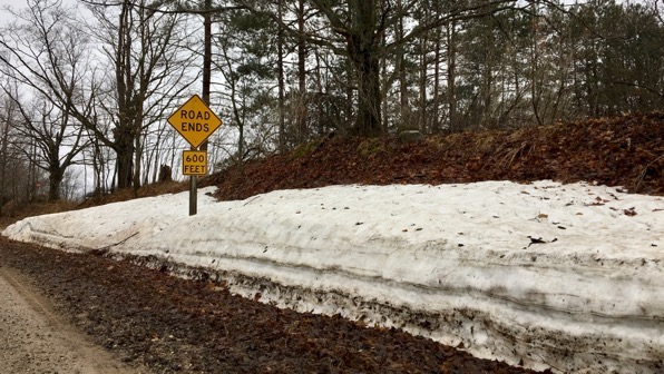Melting snowbank