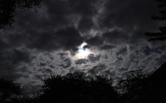 Moonlight no madness
