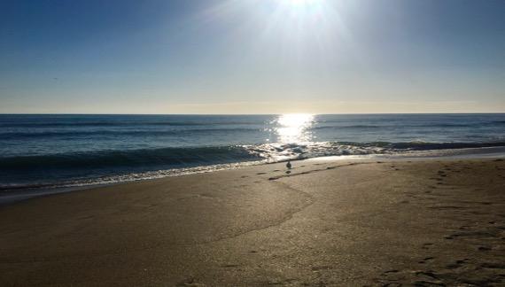Morning sun beach