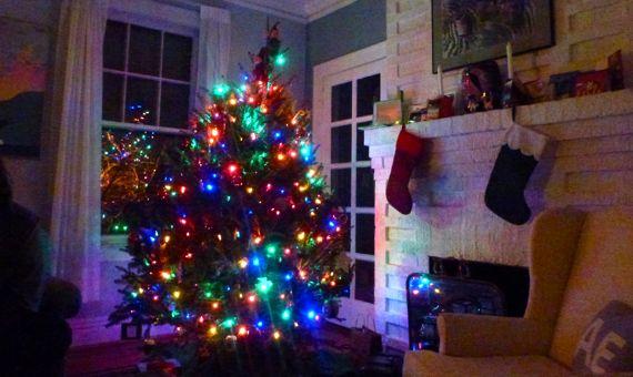 No flash tree lit up