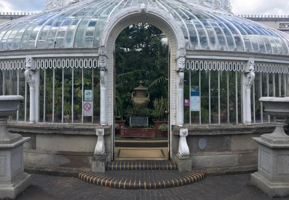 Palm house Belfast