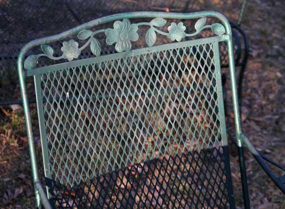 patio_furniture_chair_sunlit.jpg