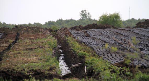 Peat drainage turves