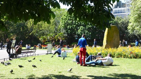 Pigeons picnickers