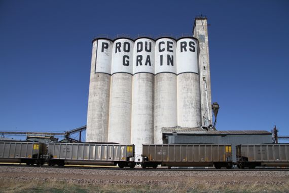Producers grain silos train