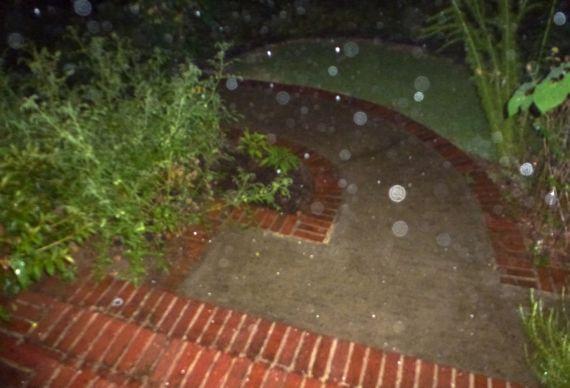 Rain arrives splish splash