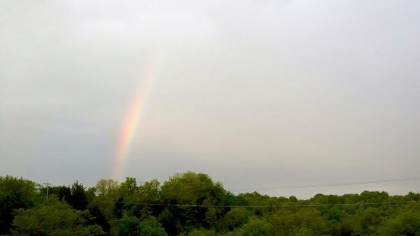 Rainbow KY