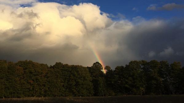 Rainbow east