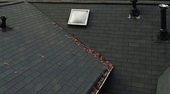 Roof leaves