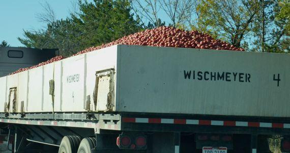 semi_truckload_of_tomatoes_I75.jpg