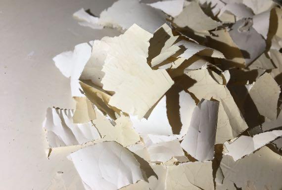 Shelf paper bits