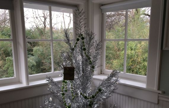 Silver tree in aerie