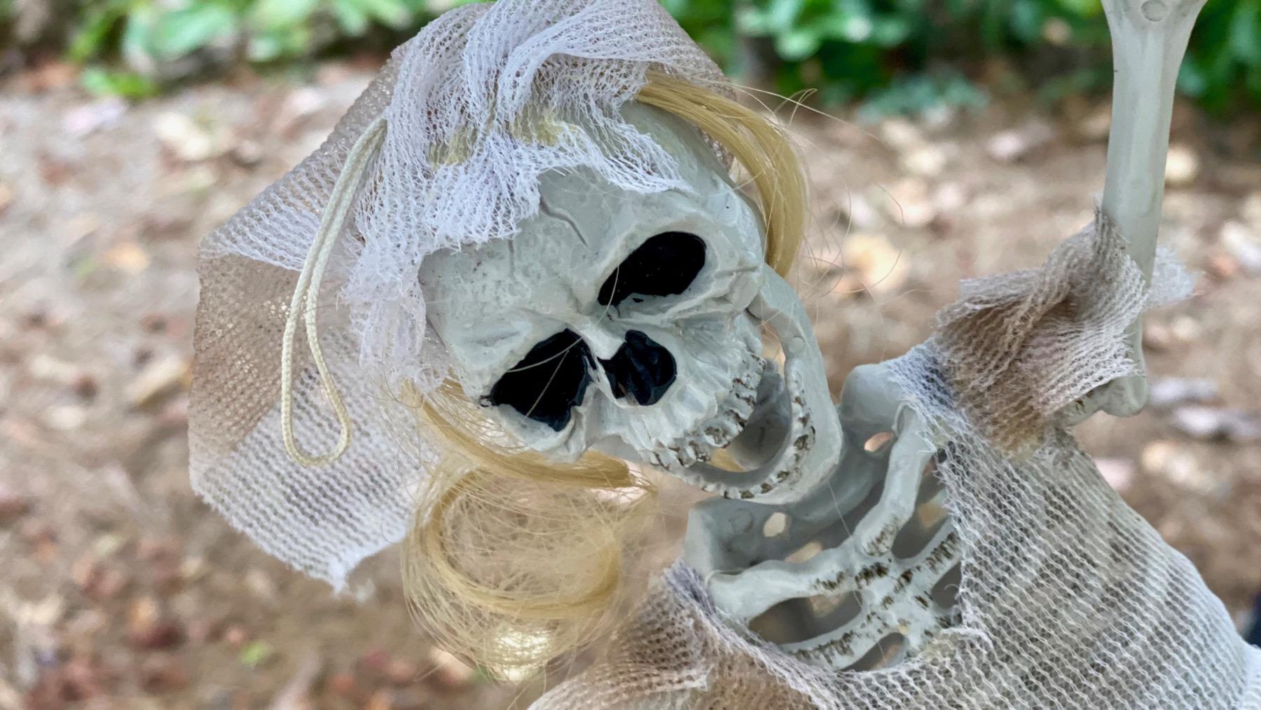 Skeleton ghost ornament