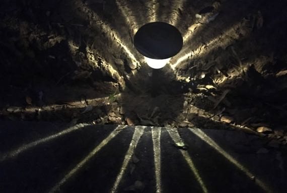 Solar footpath light