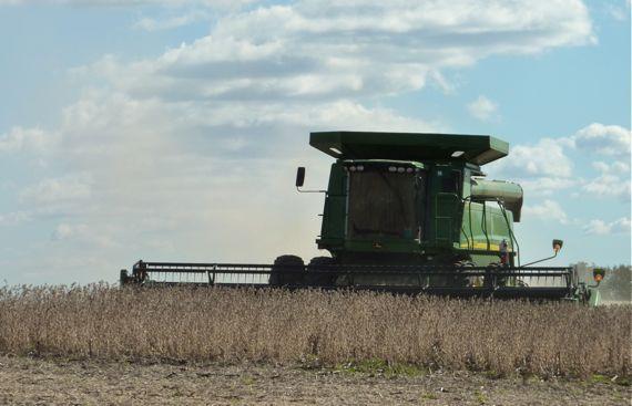 soybean_harvester_spewing.jpg