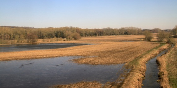 Spring flooded fields