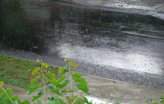 street_rain.jpg