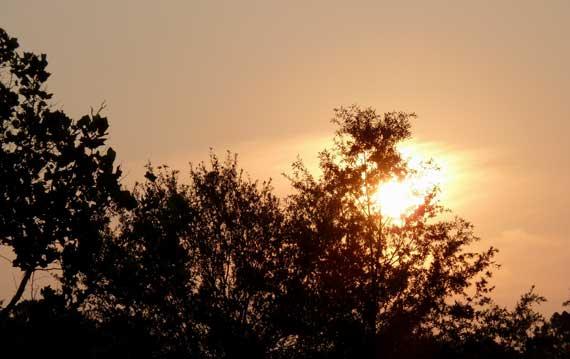 sunrise_piedmontpk.jpg