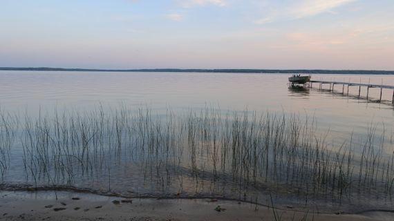 Sunset lake reeds