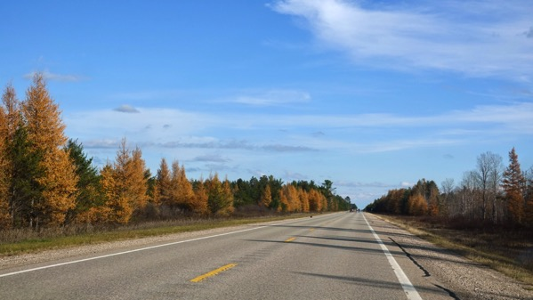 Tamaracks Seney stretch