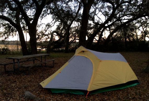 Tent under oaks Spn moss