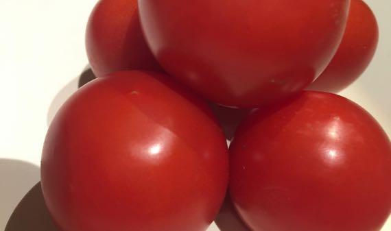 Tomato penta
