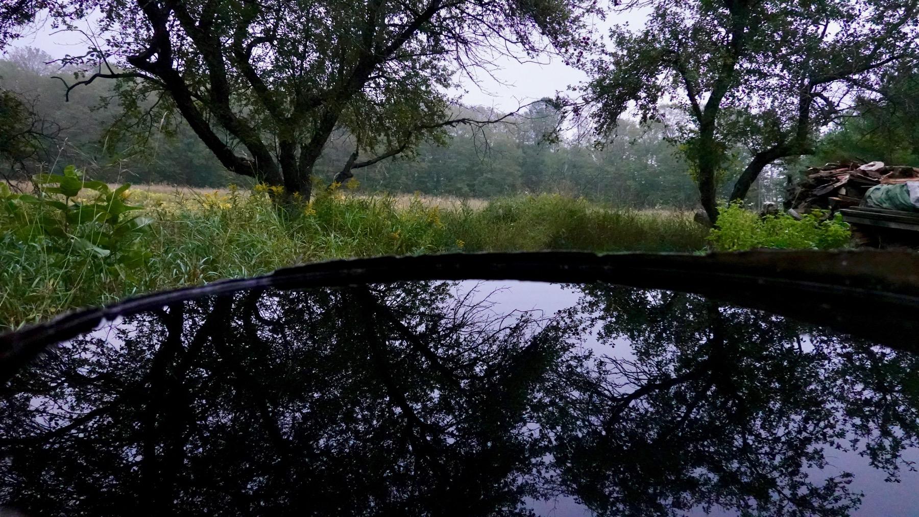 Waterbarrel reflection