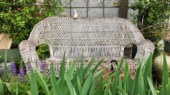 Wicker waiting