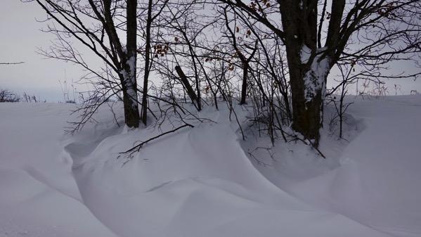 Wind sculpts snow