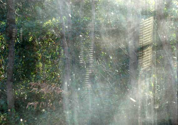 window_smudged.jpg